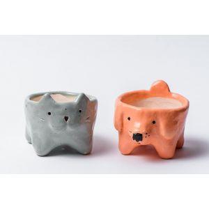 Cat and Dog succulent pots set