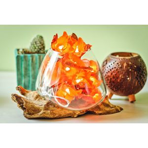 Molten glass and wood root decor