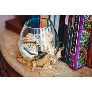 Molten glass on driftwood terrarium