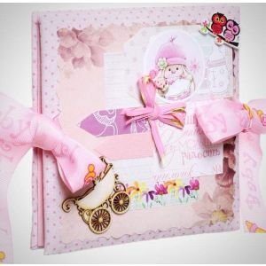 "Baby photo album book ""Pink story"""