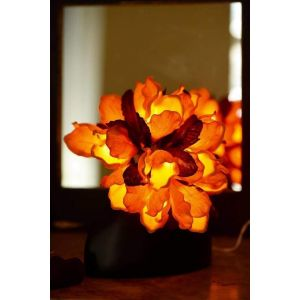 Orange indoor fairy lanterns