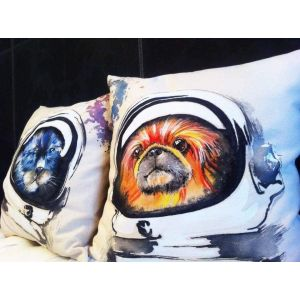 Pillow designs. Set of pillows «Space friends»