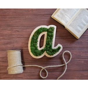 """Wall letters""""Moss ABC"""""""