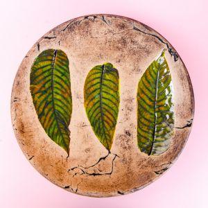 Plant pattern plate