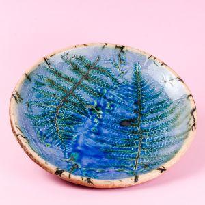 Fern botanical plate