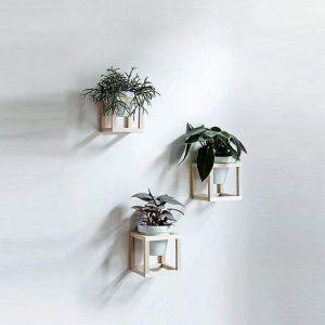 Set of 3 Hanging Planters