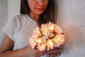 White fairy lanterns