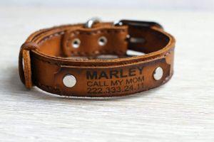 Yellow leather dog collar
