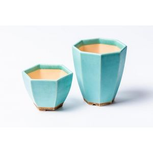 Blue succulent pots set of 2