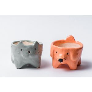 Cat and Dog succulent pots set