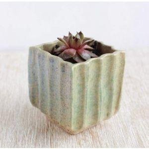 "Beige texture pot for cactus ""Beige sand"""