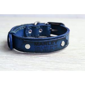 Blue leather dog collar
