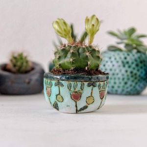 Ceramic cactus pot