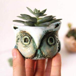 """Ceramic succulent pot """"Owl"""""""