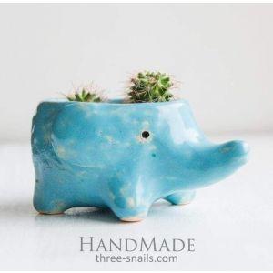 Cute succulent pot