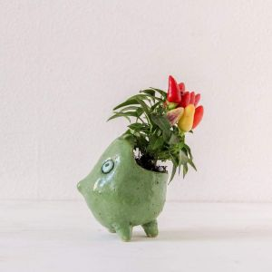 Funny pot for plants