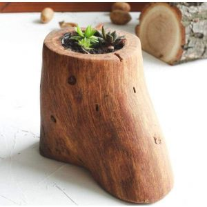 "Natural wood succulent pot  ""Dessert"""