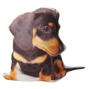 "Pillow designs ""Wiener dog"""