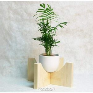 Plant stand natural