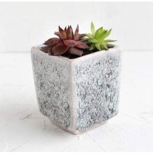 "Pot for succulents ""Cube"""