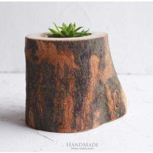 """Rustic succulent cactus pot """"Forest"""""""