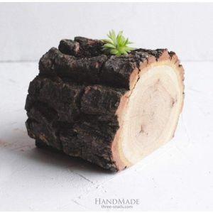 """Rustic succulent pot """"Nature"""""""