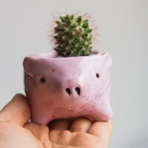 Small animal succulent pot