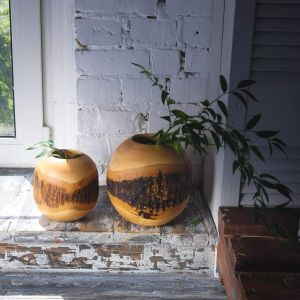 Tree bark mango wood rustic vase