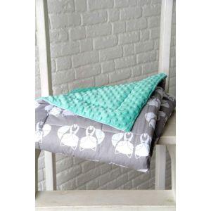 Turquoise baby minky blanket