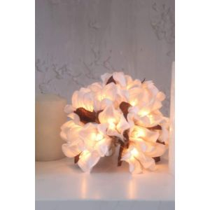White flower stringlight