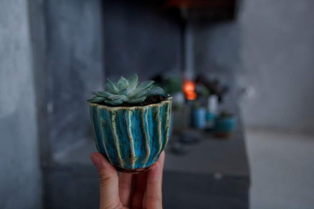 Make your house eco-friendly: flower pots & plant shelves
