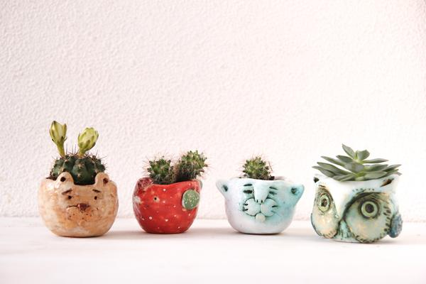 succulent pots with cute animals