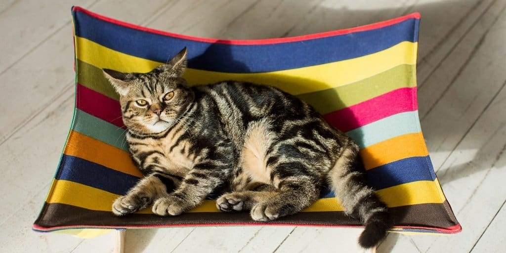 Designer's pets hammock